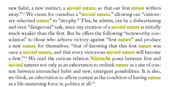 Second nature as a critical paradigm