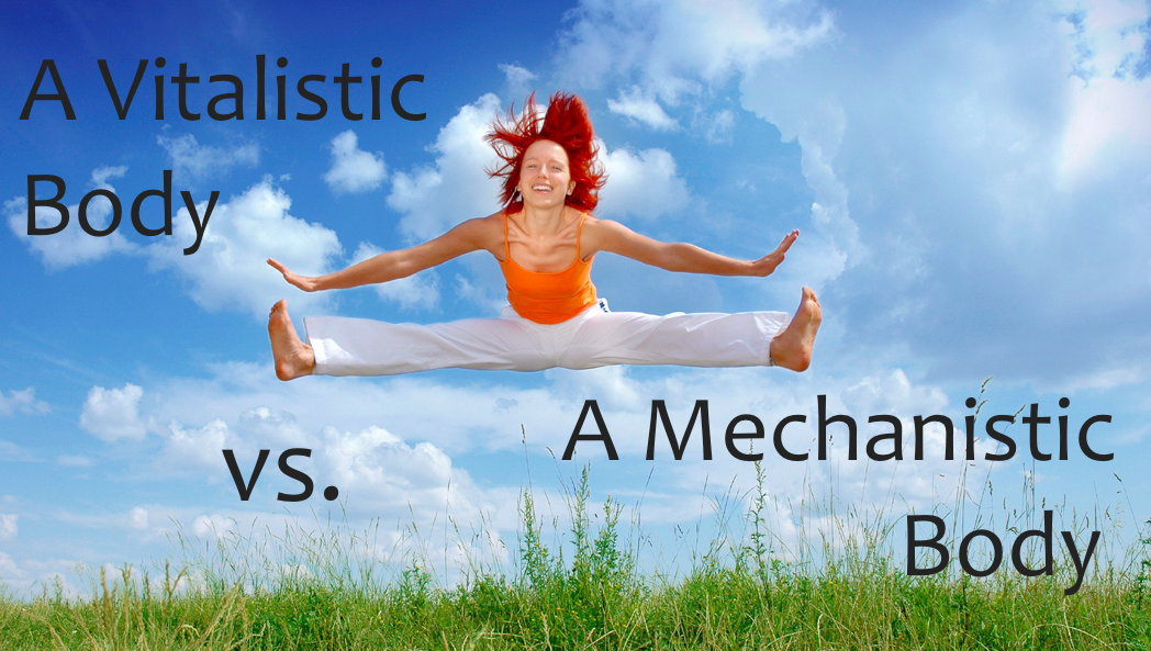 Vitalism-vs-Mechanism-Picture