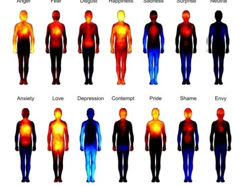 How Emotions Are Mapped On The Human Body
