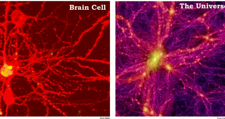 Physicists Find Evidence That The Universe Is A 'Giant Brain'