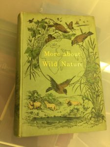 c19th nature book by Eliza Brightwen